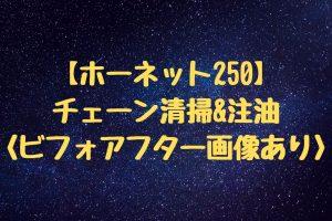 【ホーネット250】チェーン注油&注油(ビフォアフター画像あり)